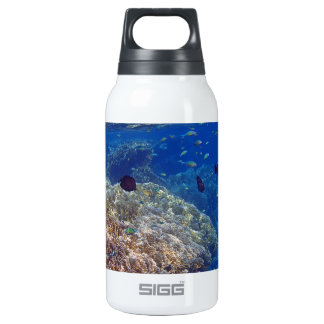 amazing red sea thermos water bottle