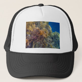 amazing red sea trucker hat