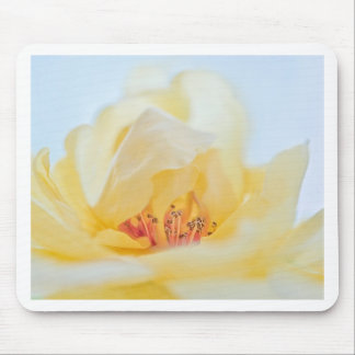 Amazing rose mouse pad