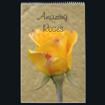 "Amazing Roses 2019 Calendar<br><div class=""desc"">all kind of wonderful roses and many different colors - excellent breeds,  a real eyecandy for lovers and fans of this fantastic flowers</div>"