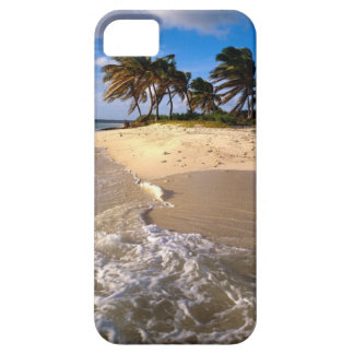 Amazing Small Solitary Island iPhone 5 Case