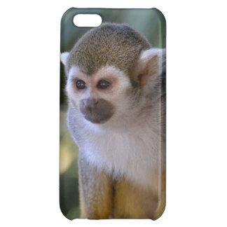 Amazing Squirrel Monkey Case For iPhone 5C