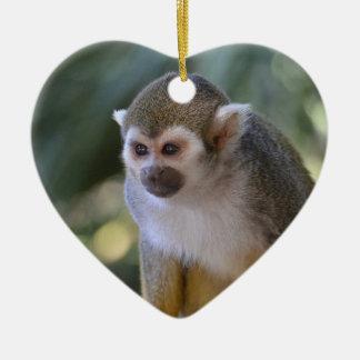 Amazing Squirrel Monkey Ceramic Ornament