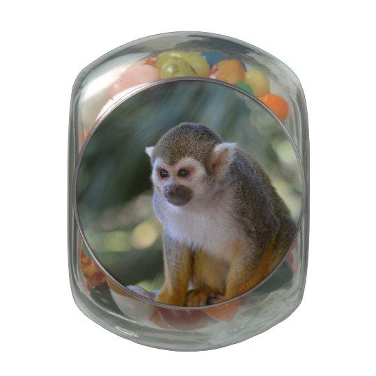 Amazing Squirrel Monkey Glass Candy Jars