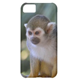 Amazing Squirrel Monkey iPhone 5C Cover