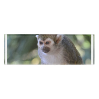Amazing Squirrel Monkey Name Tag
