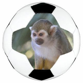 Amazing Squirrel Monkey Soccer Ball