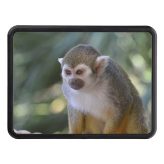 Amazing Squirrel Monkey Tow Hitch Cover