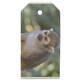 Amazing Squirrel Monkey Wooden Gift Tags