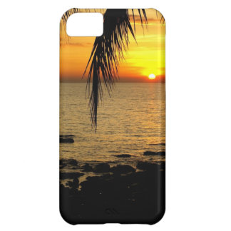 Amazing Sunset at the Beach iPhone 5C Case