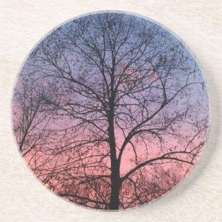 Amazing Sunset Tree Photo Sandstone Coaster