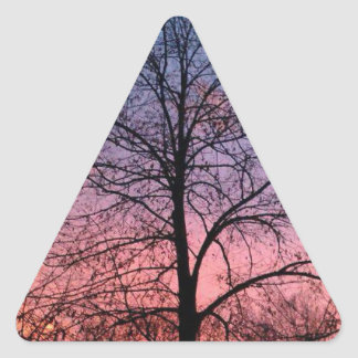 Amazing Sunset Tree Photo Triangle Sticker