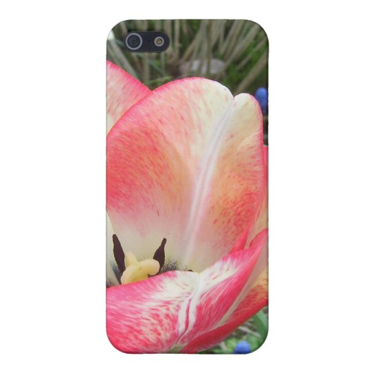 """""""Amazing Tulips"""" CricketDiane Art & Photography Cover For iPhone SE/5/5s"""