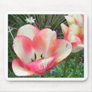 Amazing Tulips CricketDiane Art Photography Mouse Pad