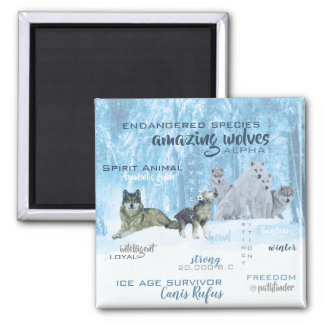 Amazing Wolves Typography | Personalized Magnet