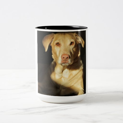 Amazing yellow lab photo on mug