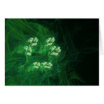 Amazon Abstract Digital Fractal Art Stationery Note Card