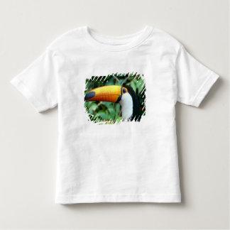 Amazon, Brazil. Yellow-beaked toucan with white Toddler T-shirt