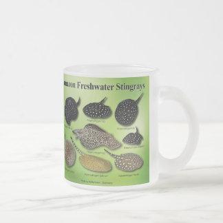Amazon Freshwater Stingrays Frosted Glass Coffee Mug
