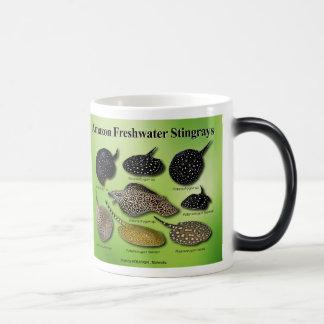 Amazon Freshwater Stingrays Magic Mug