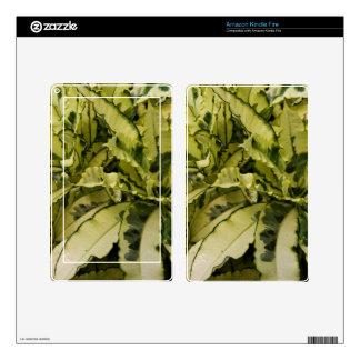 Amazon Kindle Fire Skin - Andrew Croton