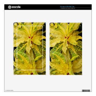 Amazon Kindle Fire Skin - Croton