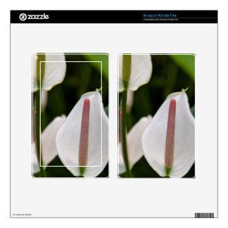 Amazon Kindle Fire Skin - Flamingo Flower