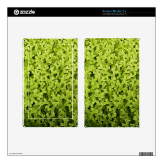 Amazon Kindle Fire Skin - Golden Trailing Clubmoss
