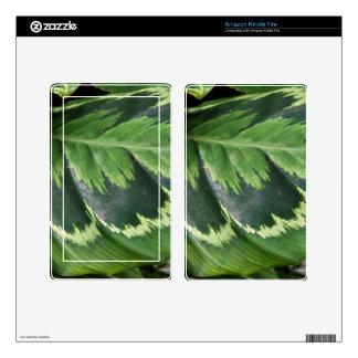 Amazon Kindle Fire Skin - Rose Calathea