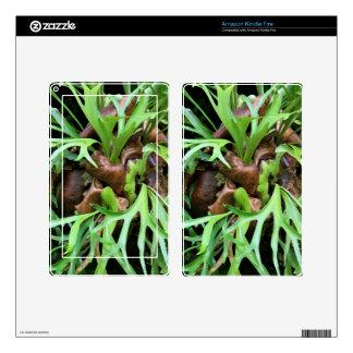 Amazon Kindle Fire Skin - Staghorn Fern