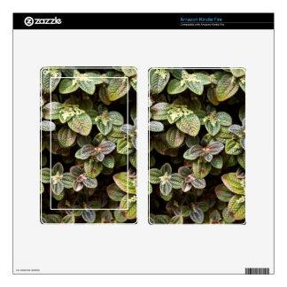 Amazon Kindle Fire Skin - Urticacae