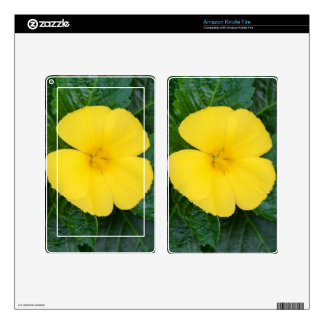 Amazon Kindle Fire Skin - West Indian Holly