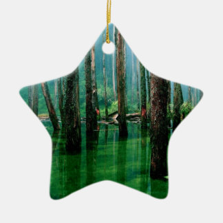 Amazon Marsh Ceramic Ornament
