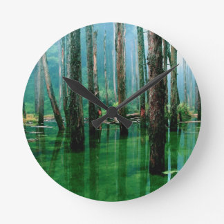Amazon Marsh Round Clock