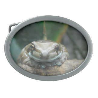 Amazon Milk Frog Belt Buckle