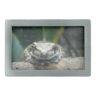 Amazon Milk Frog Buckle Rectangular Belt Buckles