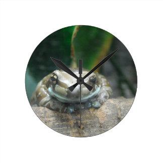 Amazon Milk Frog Clock