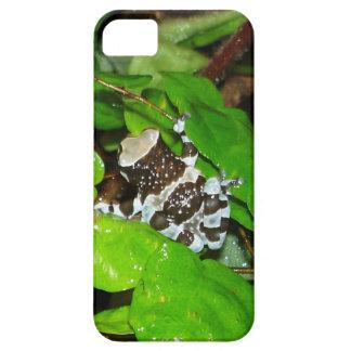 Amazon Milk Frog Head iPhone5 Case