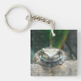 Amazon Milk Frog Keychain Acrylic Key Chain