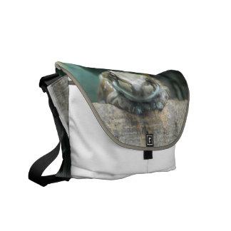 Amazon Milk Frog Messenger Bag