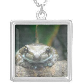 Amazon Milk Frog Necklace