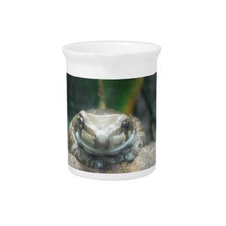 Amazon Milk Frog Pitcher