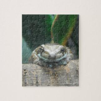 Amazon Milk Frog Puzzle