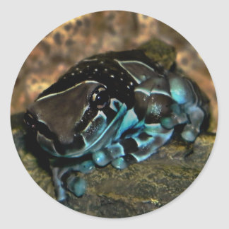 Amazon milk frog sticker