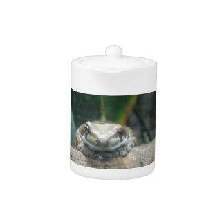 Amazon Milk Frog Teapot