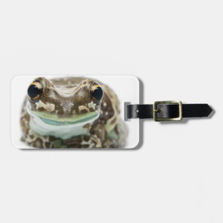 Amazon Milk Frog - Trachycephalus Resinifictrix Luggage Tag
