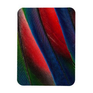 Amazon parrot feather design magnet