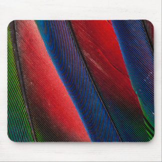 Amazon parrot feather design mouse pad