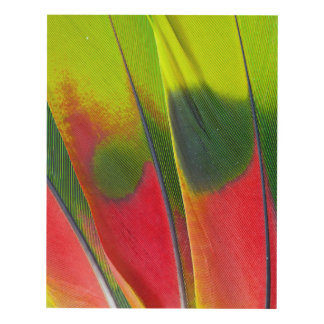 Amazon Parrot Feather Design Panel Wall Art