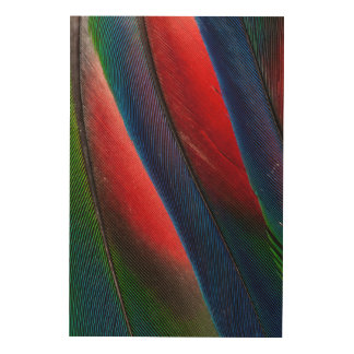 Amazon parrot feather design wood wall decor
